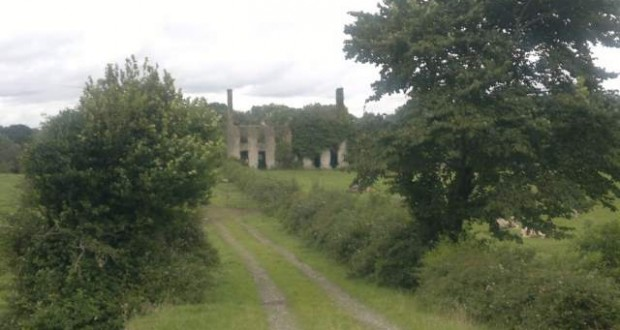 Offaly heritage