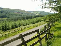 Slieve Bloom walks