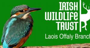 Irish Wildlife Trust Newsletter