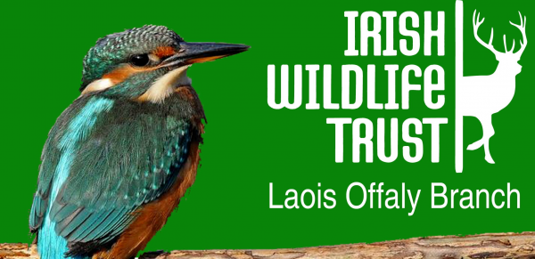 irish wildlife trust.